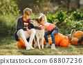 Cute childresn sitting on a garden near many pumpkins 68807236