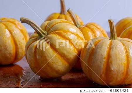 新鮮,南瓜,新鮮なカボチャ、Fresh, pumpkin, 68808421