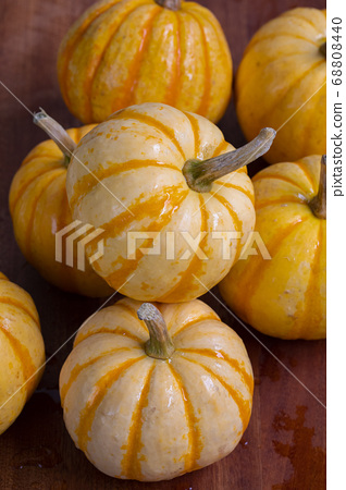 新鮮,南瓜,新鮮なカボチャ、Fresh, pumpkin, 68808440