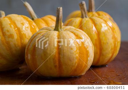 新鮮,南瓜,新鮮なカボチャ、Fresh, pumpkin, 68808451