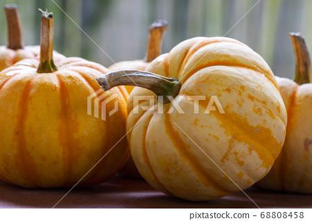 新鮮,南瓜,新鮮なカボチャ、Fresh, pumpkin, 68808458