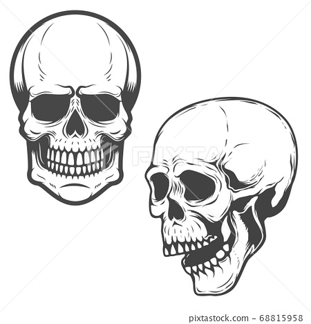 Set of the vector skulls isolated on white 68815958