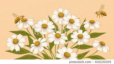 Vintage engraving flower background 68826009