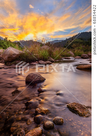 River stone and tree with sky and cloud colorful, 68854422