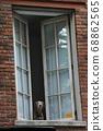看一個大廈的窗口的狗在倫敦蘇豪區,紐約。 68862565