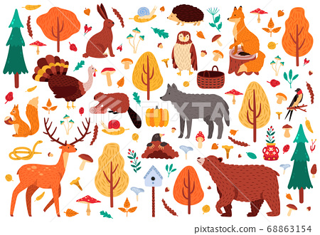 Autumn cute animals. Wild hand drawn bear raccoon fox and deer characters, woodland birds and animals isolated vector illustration icons set 68863154