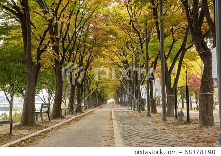 가을날 춘천 공지천공원 산책길 68878190