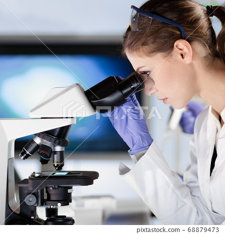 Life scientist researching in the laboratory. 68879473
