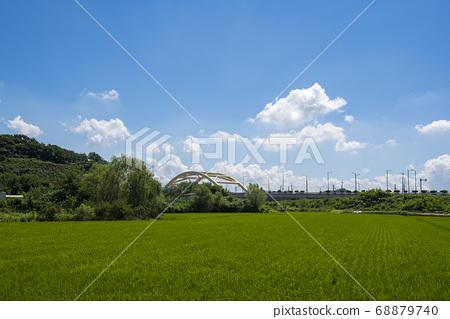 호조벌,시흥시,경기도 68879740