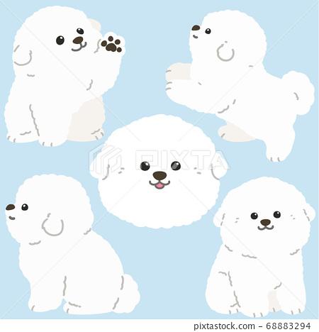 比熊弗里茲小狗設置在沒有主線的各種姿勢 68883294