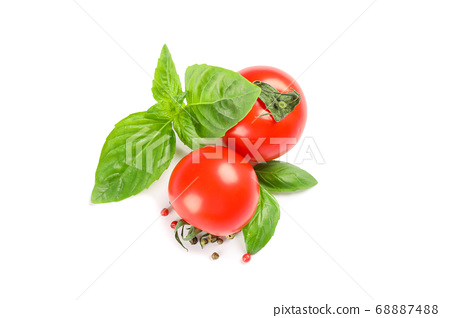 Fresh cherry tomatoes with basil and spices 68887488