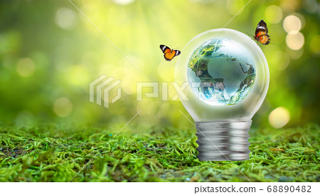 The bulb is located on the inside with leaves forest and the trees are in the light. Concepts of environmental conservation and global warming plant growing inside lamp bulb over dry 68890482
