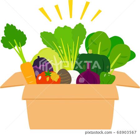 紙箱裡的各種蔬菜 68903567