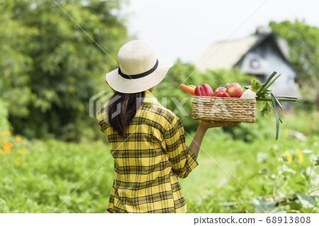 Women farmer 68913808