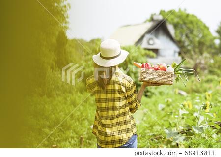 Women farmer 68913811