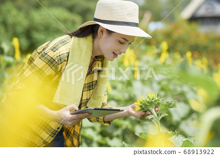 High-tech agriculture 68913922