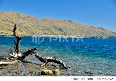 Driftwood and Lake New Zealand Queenstown 68935752