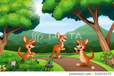 Cartoon three kangaroo playing at the nature 68944870