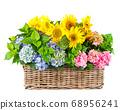 Sunflowers hortensia flowers isolated white 68956241
