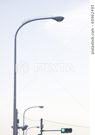 Streetlights and green lights with bird guards 68962495
