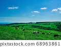 Naitai Kogen Farm (Kamishihoro Town, Hokkaido) 68963861