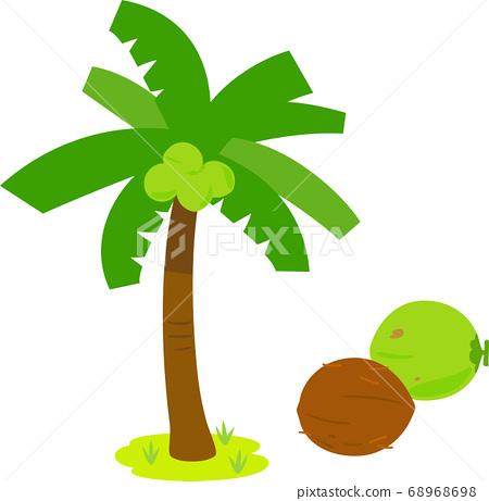 椰子樹和棕櫚果 68968698