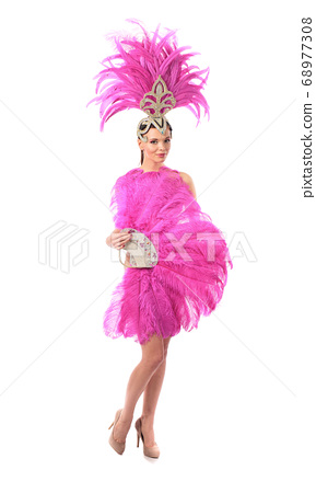 Beautiful girl in carnival costume with 68977308