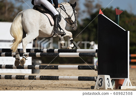 Sport horse jumping over a barrier on a obstacle course 68982508