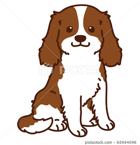 坐下棕色騎士國王查爾斯獵犬主線 68984096