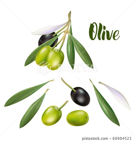 Realistic olive branch 3d illustration for 68984521