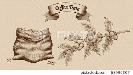Engraving coffee beans and fruit 68990807