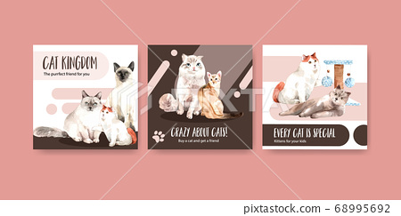 Advertise template design with  cat for leaflet 68995692