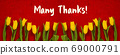 Baner Of Yellow Tulip Flowers, Red Background, 69000791