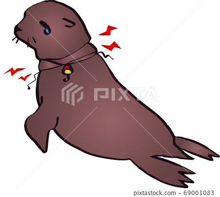 Environmental problems-Sea lions caught in fishing lines 69001083