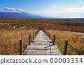 Kiyosato/Beautiful Forest Trail 69003354
