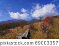 Kiyosato/Beautiful Forest Trail 69003357