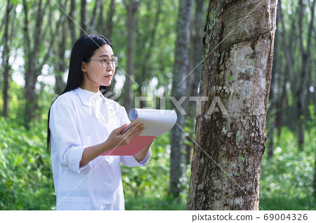 Female botanists in white coat with laptop at the forest.Young beautiful asian scientist woman looking at the bark of the rubber tree and note for researches rubber latex development.working outdoor. 69004326