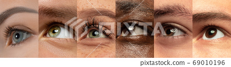 Set, collage of different types of male and female eyes 69010196