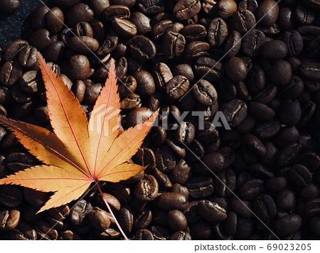 烘焙過的咖啡豆和楓葉 69023205