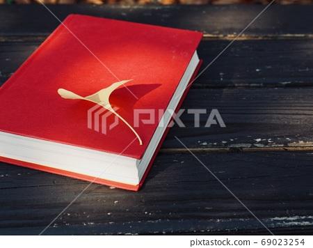 書籍和秋天的楓葉,銀杏葉,落葉 69023254