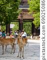 Todaiji Namdaemun and Deer 69025086