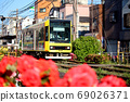 荒川遊園地前에 정차하는 도시 전차 아라카와 선 (도쿄 사쿠라 트램)과 연선에 피는 장미 69026371