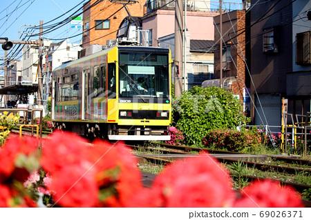 在荒川遊樂園前停靠的Toden荒川線(東京櫻花電車)和沿線盛開的玫瑰 69026371