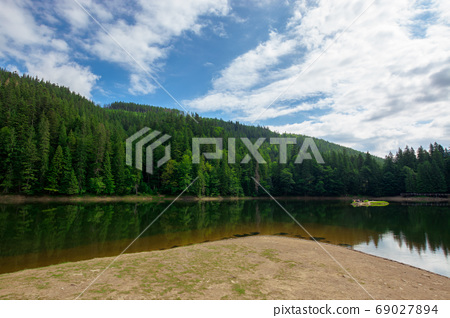 scenery around the lake in mountains. spruce forest on the shore 69027894
