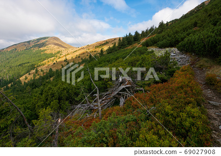 peak of the mountain strymba. carpathian landscape in autumn. pa 69027908