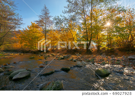 mountain river among the forest in autumn. sunny morning landsca 69027928