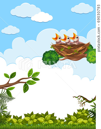 Chicks and its mother bird in nature 69030793