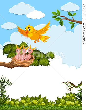 Chicks and its mother bird in nature 69030943