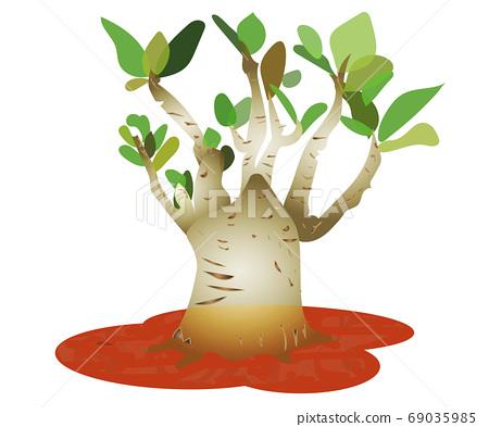 清爽的綠色觀賞植物插圖沒有框架 69035985