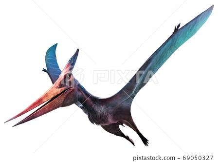 3d illustration, dinosaur, pteranodon 69050327